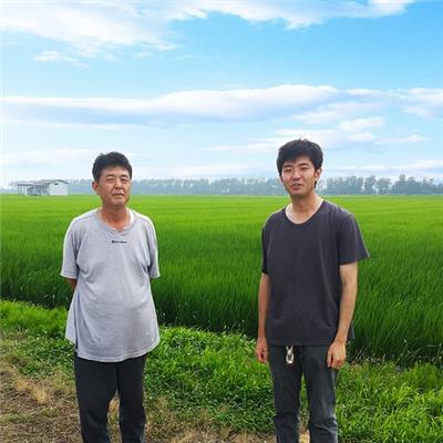 令和2年産 有機栽培 秋田あきたこまち 白米 2kg
