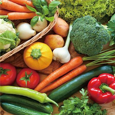 【毎月お届け】有機野菜おまかせセット 10品目程度