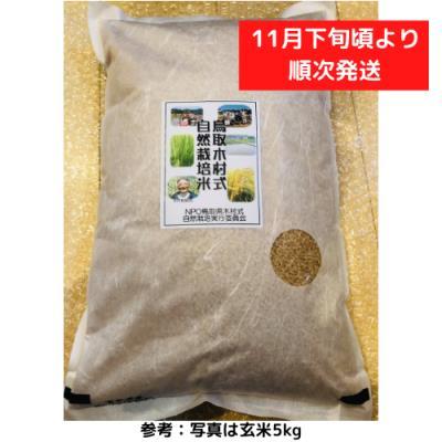 自然栽培米きぬむすめ 2kg