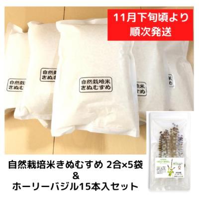 自然栽培米きぬむすめ 2合×5袋&ホーリーバジル15本入セット