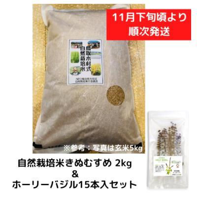 自然栽培米きぬむすめ 2kg&ホーリーバジル15本入セット