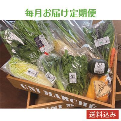 《毎月お届け》有機野菜おまかせセット 10品目程度