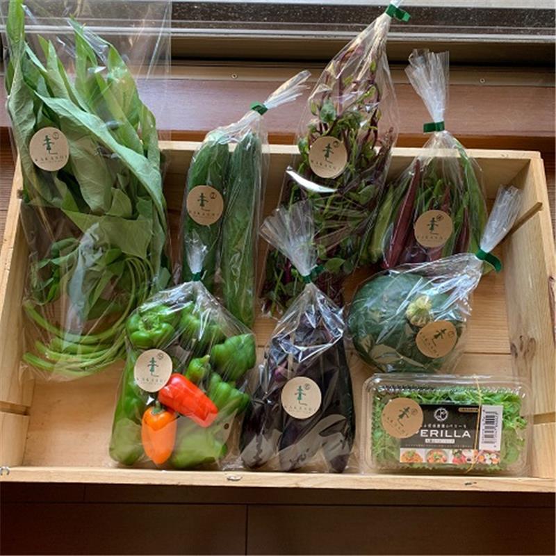 《毎月お届け》北播磨野菜おまかせセット 8品目程度