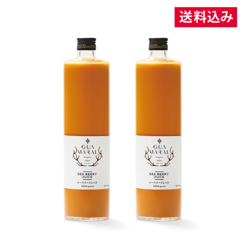 【毎月お届け】シーベリージュース 100% 720mL×2本